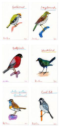 These wonderfully sketchy bird draw ings were created by UK-based artist Robert Clarke