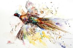 PHEASANT Watercolor Print by Dean Crouser