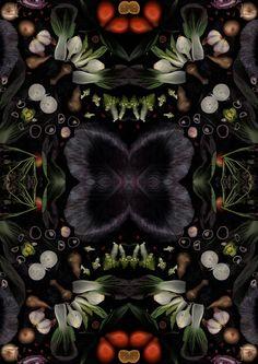henry-hargreaves-caitlin-levin-surrealist-food-scans-designboom-05 http://www.designboom.com/art/henry-hargreaves-caitlin-levin-reveal-seasonal-produce-as-surrealist-food-scans-11-08-2015/