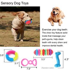 IN HAND Dog Toys Set12 Pack Pets Gift Set Ball Cotton Rope Toy Chew Squeaky Toys and Training Toy for Small or Medium Dog by * You can get more details by clicking on the image. (This is an affiliate link)