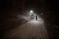 Central Park sous la neige (© John Minchillo/AP)