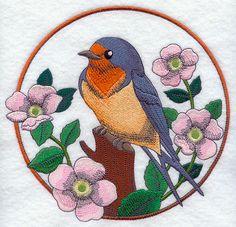 Barn Swallow and Wild Rose Circle