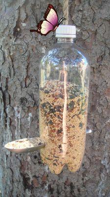 Comedor para pajaros/Bird feeder