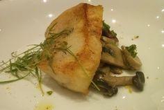 5 receitas e 4 curiosidades sobre peixes