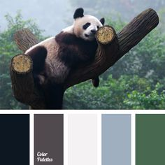 Black and gray-brown combine perfectly with blue-green and emerald green. This palette is appropriate for planning a decor of a bathroom..