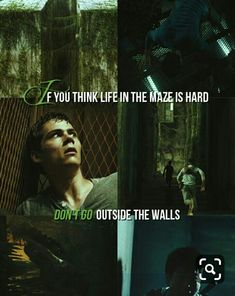 The maze runner Maze Runner The Scorch, Maze Runner Cast, Maze Runner Movie, Maze Runner Trilogy, Maze Runner Series, Thomas Brodie Sangster, The Scorch Trials, Book Memes, About Time Movie