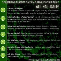 ALL HAIL THE KALE! I simply cannot get enough of this incredible leafy green! Here are some little tid bits about kale. Got any to add? What's YOUR favourite way to enjoy kale? Nutrition Tips, Health And Nutrition, Health And Wellness, Health Facts, Health Care, Health Fitness, Kale Benefits, Health Benefits, Get Healthy