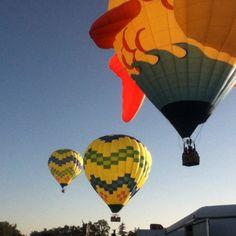 Balloons balloons and balloons One Balloon, Giant Balloons, Hot Air Balloon, Air Ballon, Kites, Umbrellas, Awesome Stuff, Landscapes, Bubbles