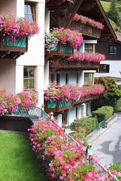 Summer in Tyrol Amazing Gardens, Beautiful Gardens, Beautiful Flowers, Beautiful Homes, Window Box Flowers, Balcony Flowers, House Plants Decor, Plant Decor, Front Garden Landscape