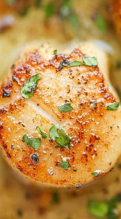 Lemon Butter Scallops Scallops are the best! Fish Recipes, Seafood Recipes, Great Recipes, Cooking Recipes, Healthy Recipes, Clam Recipes, Recipies, Holiday Recipes, Dinner Recipes