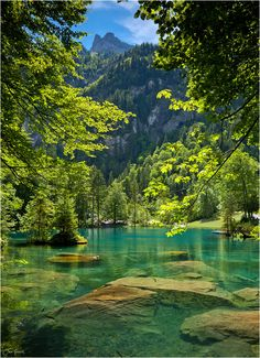 Romantic forest lake, Blausee, is one of the best-known mountain lakes in Switzerland thanks to its very special crystal-clear color. Blausee AKA Blue Lake in Kandersteg, Switzerland.
