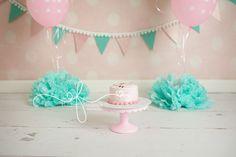 Aqua & Pink Smash Cake Photography Session CT Smash Cake Photographer CT First Birthday Photographer Elizabeth Frederick Photography www.elizabethfrederickphotography.com