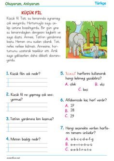 Turkish Lessons, Words