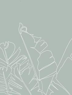 palms Framed Art Print by minimaliste - Vector Black - MEDIUM Green Wallpaper, Iphone Background Wallpaper, Pastel Wallpaper, Aesthetic Backgrounds, Aesthetic Iphone Wallpaper, Aesthetic Wallpapers, Minimalist Wallpaper, Simple Wallpapers, Story Instagram