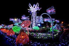 Imagination Light Garden - Bloom Field