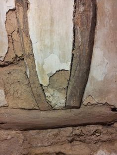 Mud and timber cellar wall. (elm I think)