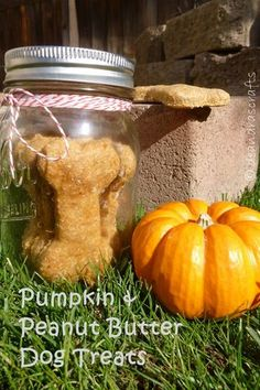 Pumpkin & Peanut Butter Dog Treats with free recipe printable!