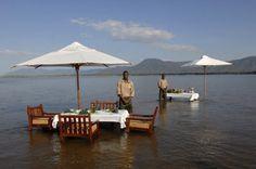 A very special location... Sausage Tree Camp (Lower Zambezi, Zambia)