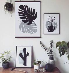 Monstera Plant Print