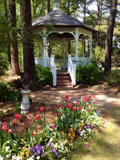 Wedding venue cape fear botanical garden in fayetteville - Botanical garden fayetteville nc ...