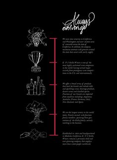 E. & J. Gallo Winery Brochure by Chelsey Tatum, via Behance