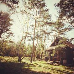 Imaginez les premiers jours du printemps. | 29 magnifiques petites cabanes qui vous donneront envie de tout quitter