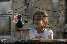 A Palestinian girl is watering her rose that she planted in a grenade.  To live in Palestine means to love!