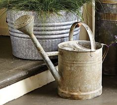Old watering can ... love it ...