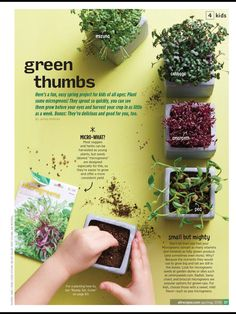 """""""Green thumbs"""" from Allrecipes, April/May 2018. Read it on the Texture app-unlimited access to 200+ top magazines."""