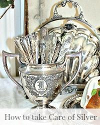 How to Care for & Polish Your Antique and Vintage Silver Want to know how to clean your silver? These are the best tips on How to Care for & Polish Your Antique and Vintage Silver. Jewellery Storage, Jewelry Organization, Jewellery Shops, Jewellery Box, Jewelry Stores, Jewelry Rings, Silver Trays, Silver Plate, Antique Earrings