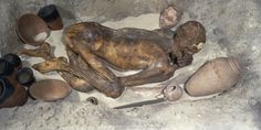 This is the body of a man who died over 5000 years ago, preserved  through direct contact with the scorching sands of Upper Egypt. His  corpse was put into a shallow pit curled-up as if in sleep. His  grave-goods were placed alongside him, and he was then covered with  sand. The hot sand absorbed all the water in his body, preventing  bacteria from causing decay.   Ginger's excellent state of preservation -  even down to his hair, hence 'Ginger' - fulfills one of the crucial  E