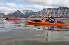 Kanu- und Kajakfahren | Beliebte Orte zum Paddeln in Norwegen Fjord, Kayaking, Boat, Norway, Adventure, Landscape, Kayaks, Dinghy, Boats
