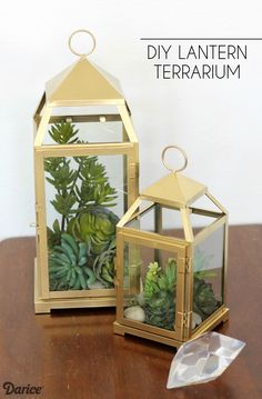 Lantern Challenge: How to Make a Terrarium Lantern
