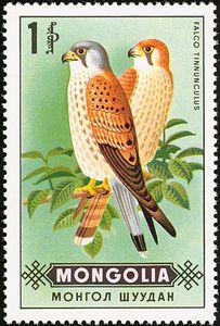 birds of prey stamps | Stamp: Falco tinnunculus (Mongolia) (Birds of prey) Mi:MN 604