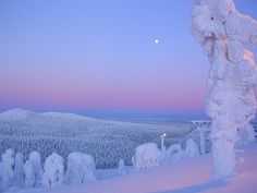 See the ice face sunset, Ruka in Finland (magical hour) Winter Sunset, Winter Snow, Winter Christmas, Long Winter, Lappland, Beautiful World, Beautiful Places, Winter Schnee, Lapland Finland