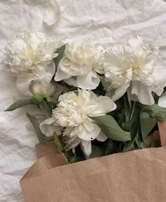 Image may contain: flower, plant and natureYou can find City of bones and more on our website.Image may contain: flower, plant and nature Simple Flowers, White Flowers, Beautiful Flowers, White Tulips, Fresh Flowers, Cream Aesthetic, Flower Aesthetic, Sogetsu Ikebana, No Rain