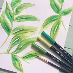 Brush Pen Art, Watercolor Leaves, Tombow, Pens, Art Drawings, Stationery, Create, Artwork, Instagram
