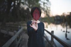 by photopontas