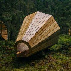 Design et Nature – Des mégaphones géants pour écouter les bruits de la forêt