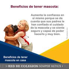 Algunos beneficios por tener mascota en casa para los niños. #SemperAltius