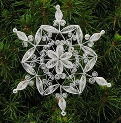 quilled snowflake Stacey Kennedy