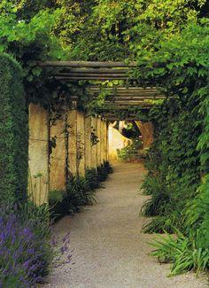 Provence garden walkway with organic overhead pergola