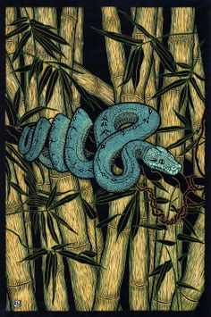 Green Tree Python 76 x 50.5 cm Edition of 50 Hand coloured linocut on handmade Japanese paper $1,200