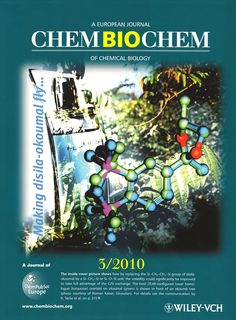 Disila‐Okoumal: A Silicon Analogue of the Ambergris Odorant Okoumal Feature Article, Cover Pics, Biology, Christian, Abstract, Pictures, Summary, Photos, Christians