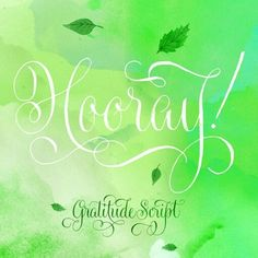 Gratitude Script, a new typeface designed by Kathy Milici and Ale Paul! Over 1500 glyphs, and tons of ornaments & flourishes! Now 35% off at myfonts.com!