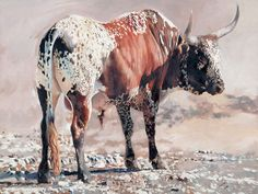 Leigh Voigt Longhorn Cow, Longhorn Cattle, Bull Painting, Bull Cow, Inspirational Wall Art, Paintings I Love, Rind, Western Art, African Art