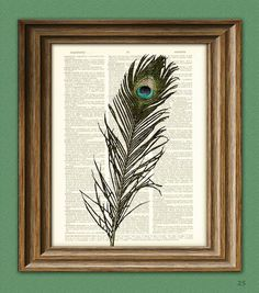 Hey, I found this really awesome Etsy listing at http://www.etsy.com/listing/69142103/colorful-peacock-feather-bird