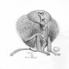 Animal Crackers : : Carter Goodrich