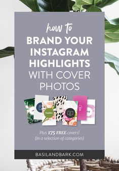 Ever since Instagram launched this new feature several weeks ago, users have been experimenting with different ways to make them work for their brands and businesses. One of the best and most interesting ways to take advantage of the feature is by editing the covers for each of your Highlights! // Basil and Bark