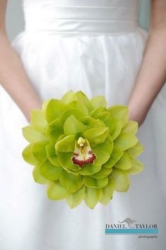 Composite bouquets are the perfect option for brides who desire a vintage-style bouquet. Several flower blooms or even just a few petals are used to create beautiful, composite bouquets that are eye-catching going down the aisle and will look classic in photographs years to come. Flower featured: green cymbidium orchids — Photo Courtesy HotHouse Design Studio in Birmingham, AL www.hothousedesignstudio.com www.danieltaylorphoto.com